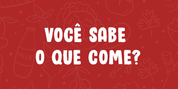 Medium_voce_sabe_o_que_come